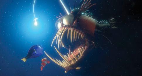 Le monde de Némo Nemo6